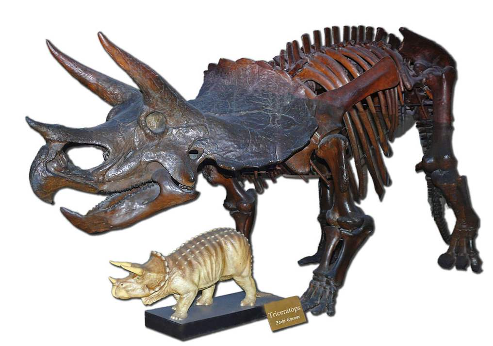 kontroverza dinosaura
