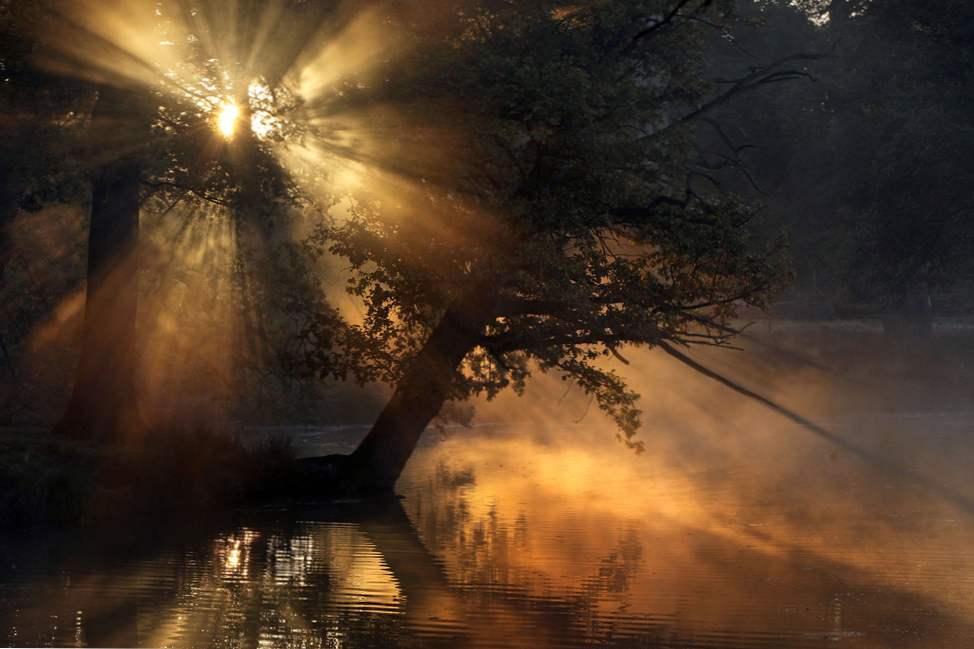 šumsko jezero mn datiranje online znakovi predator