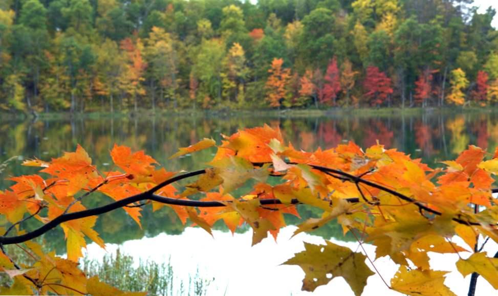 šumsko jezero mn datiranje tosh 0 upoznavanje putem weba